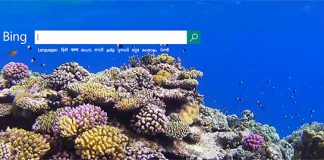 Time to optimize your website for Bing